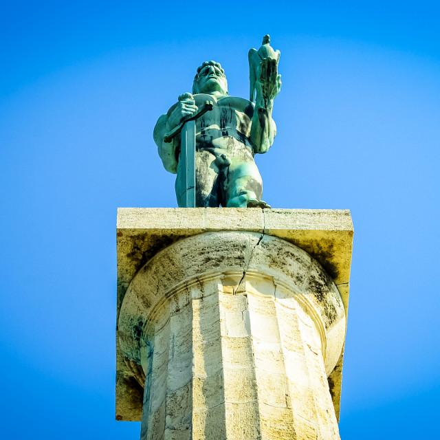 """""""Pobednik, monument in Belgrade"""" stock image"""