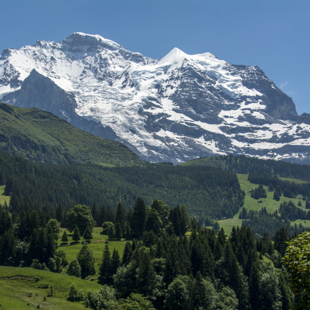 """The Jungfrau"" stock image"
