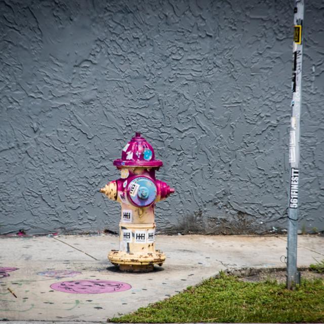 """Fire Hydrant splatter"" stock image"