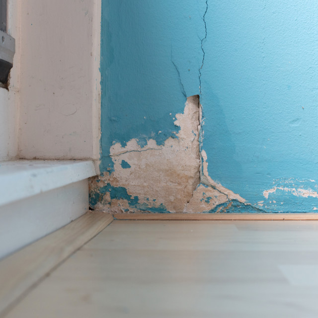 """""""Old peeled wall with mold"""" stock image"""