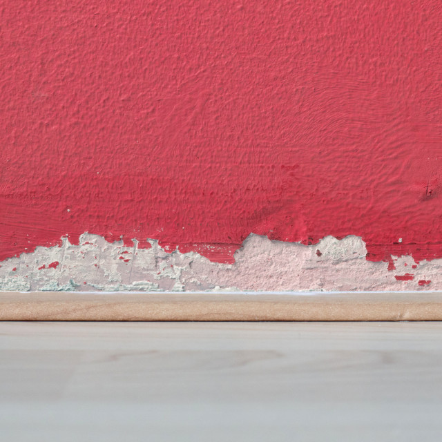 """Old peeled wall with mold"" stock image"