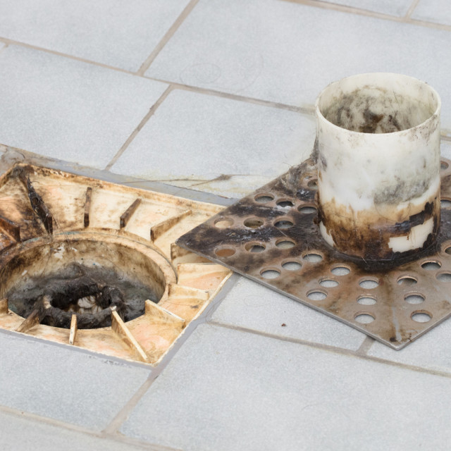 """""""Floor drain in an old shower"""" stock image"""