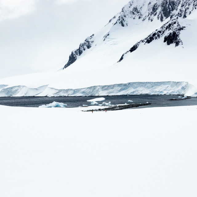 """0835 - Antarctica, Dorian Bay's landing site. 60 mm focal length."" stock image"