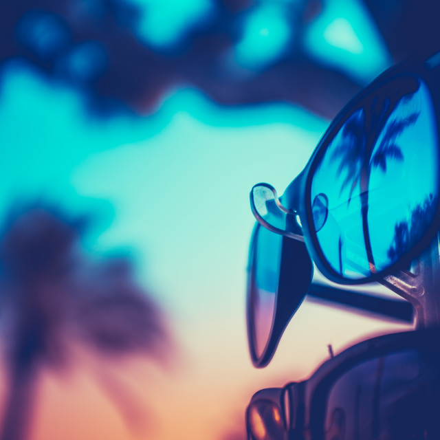 """Palm Tree Reflected Vacation Sunglasses"" stock image"