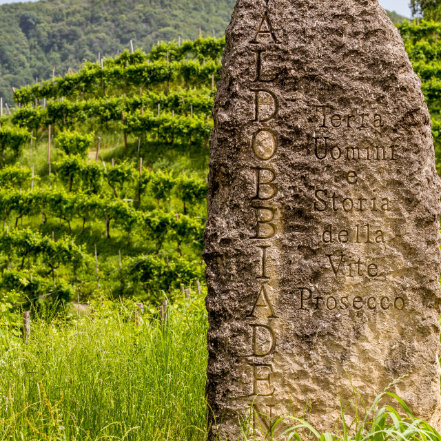 """Stone on the edge of a vineyard"" stock image"