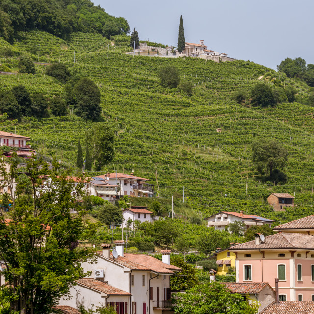 """Giua Wine Village"" stock image"