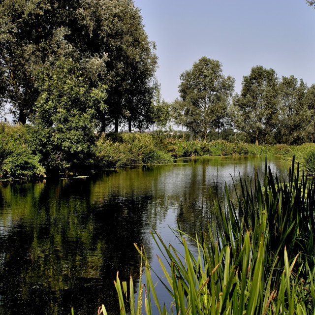 """""""Chelmer and Blackwater navigation canal"""" stock image"""