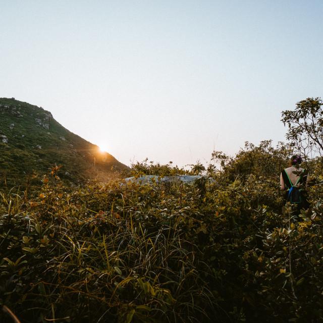 """""""Hiking Lamma Island Hong Kong"""" stock image"""