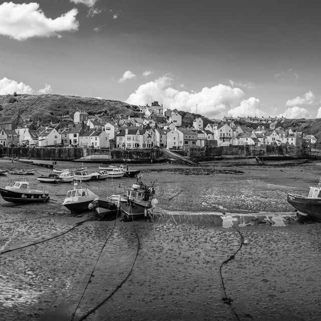 """""""Staithe Harbour"""" stock image"""