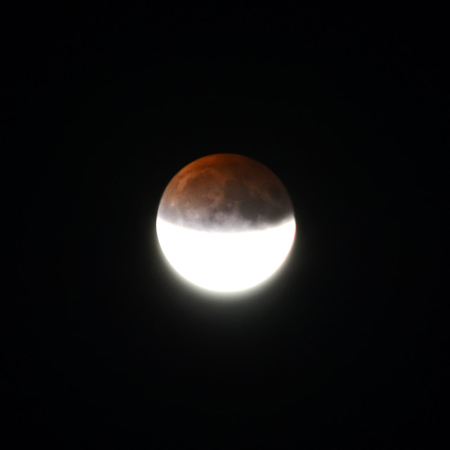 """Half Blood Full Moon"" stock image"