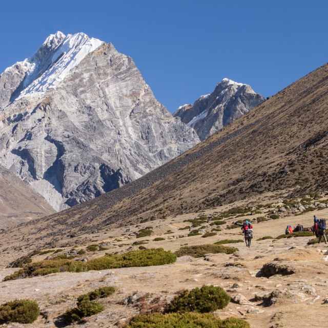 """""""Trekkers and porters heading towards Everest Base Camp on the trail above Dingboche"""" stock image"""