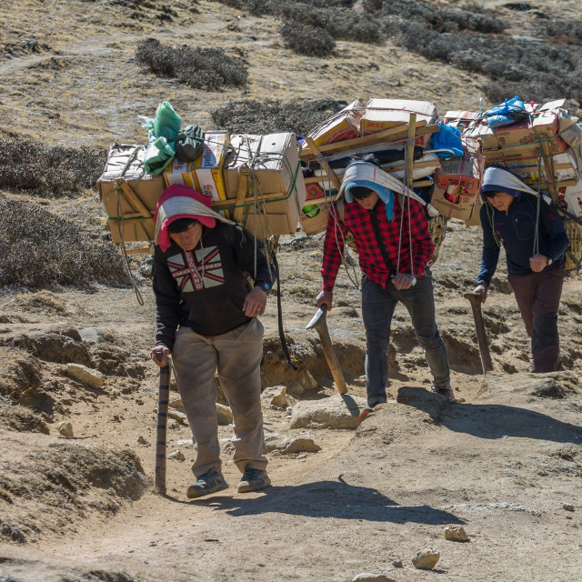 """""""Porters carrying a heavy loads en route towards the Everest Base Camp"""" stock image"""