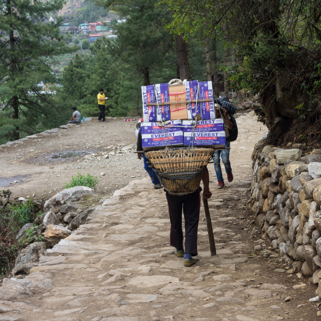 """""""Porter carrying a heavy load en route towards the Everest Base Camp"""" stock image"""