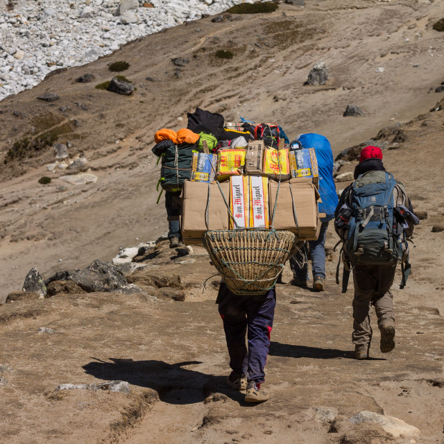 """""""Porter carrying a heavy load towards the Everest Base Camp"""" stock image"""