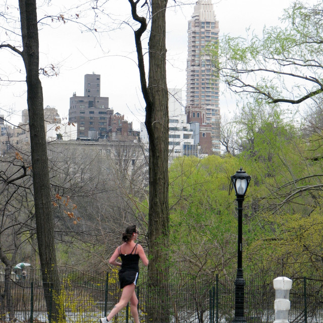 """""""A jogger in Central Park 2008"""" stock image"""