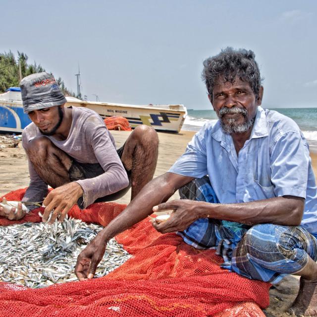 """Kanden and Sanden - Sri Lankan fishermen sorting their catch, Kalpitiya."" stock image"