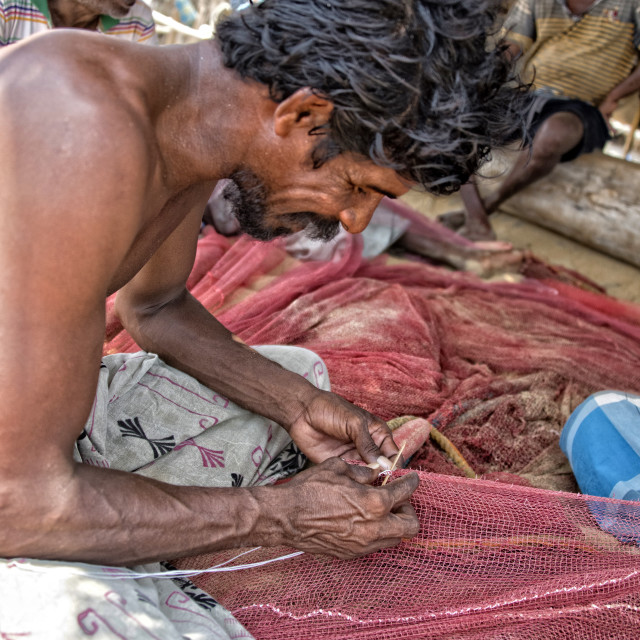 """Perevan; Sri Lankan fisherman mending nets near Dolphin Bay"" stock image"