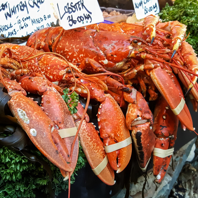 """A fish monger selling lobsters"" stock image"