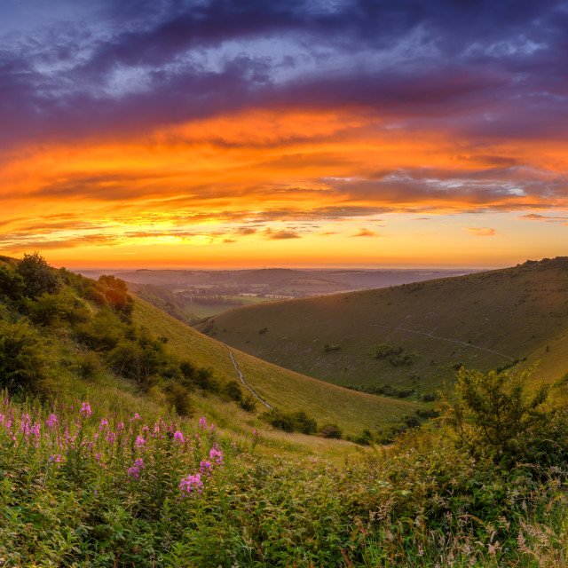 """""""Summer sunset from Butser Hill, South Downs National Park, UK"""" stock image"""
