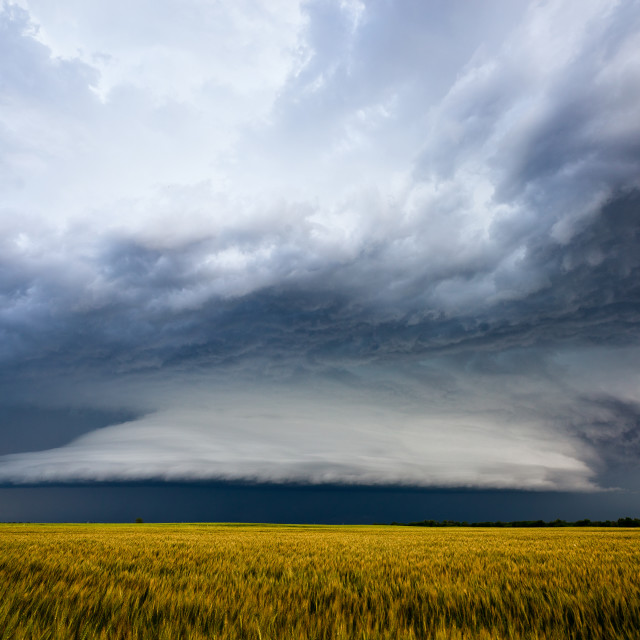 """Storm clouds over a field"" stock image"
