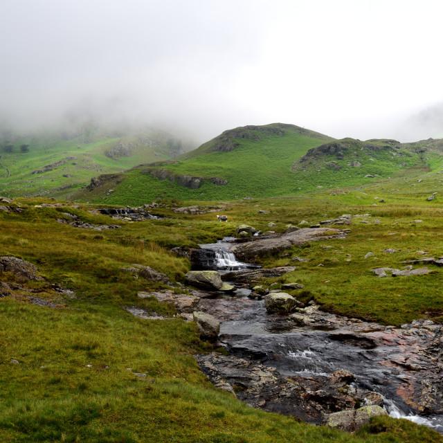 """""""Tiberthwaithe Beck running though the moorland"""" stock image"""