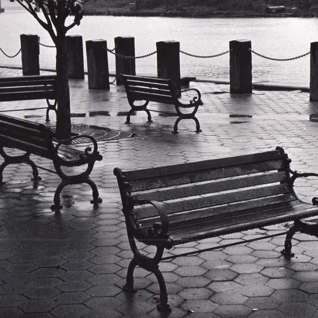 """""""Benches in Rain"""" stock image"""
