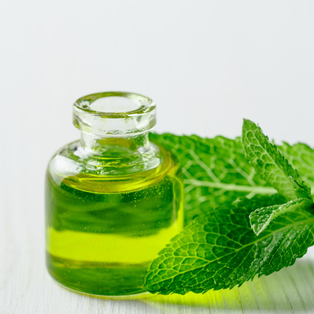 """""""Melissa or mint oil with green leaves"""" stock image"""