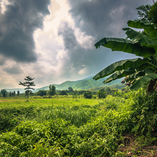 """""""Mae Hong Son - October 18, 2014: Landscape of the province of Mae Hong Son,..."""" stock image"""