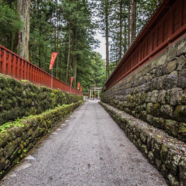 """""""Nikko - May 22, 2019: Entrance to Toshogu shrine in Nikko, Japan"""" stock image"""