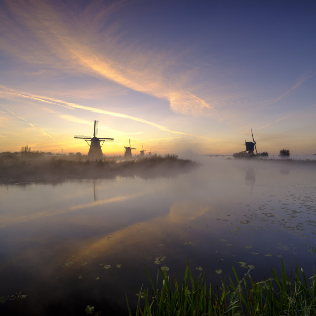 """""""Early morning mist on an autumn morning in the Kinderdijk UNESCO"""" stock image"""