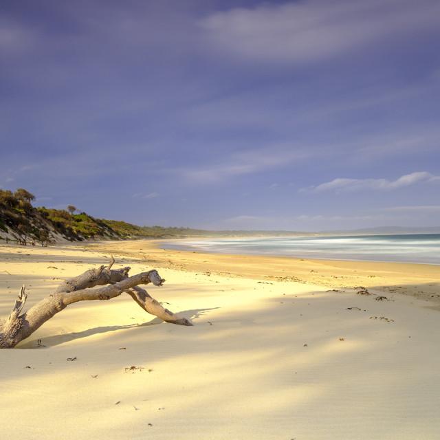 """Bherwerre Beach from Bay of Plenty, Boodero National Park, Jervi"" stock image"