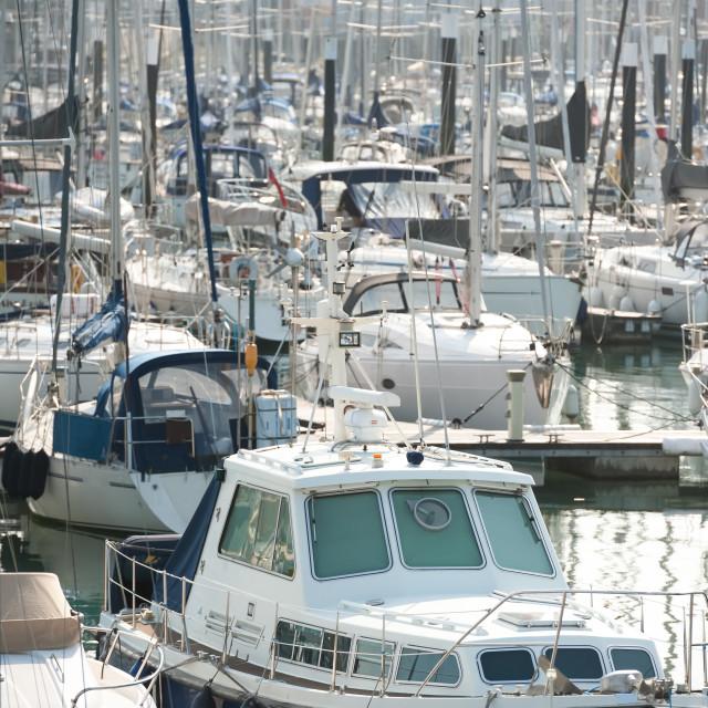 """busy boating marina"" stock image"