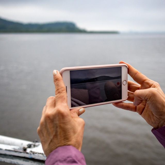 """""""Woman hands holding phone shooting video of lake"""" stock image"""