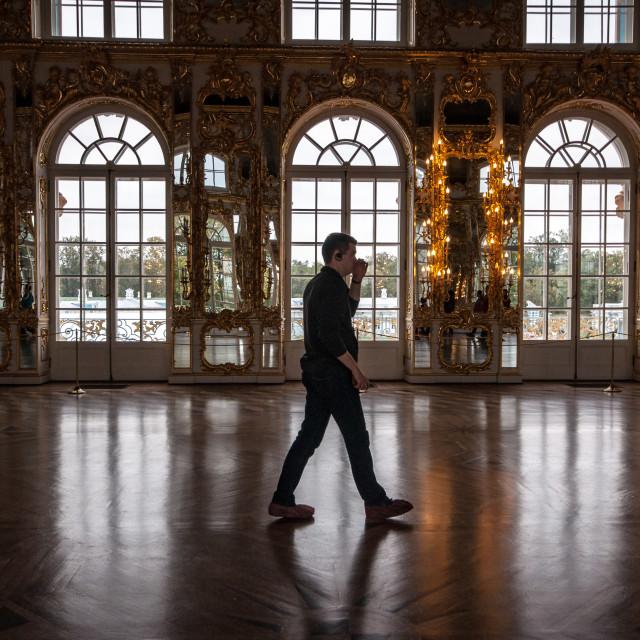 """Ballroom - Catherine's palace"" stock image"
