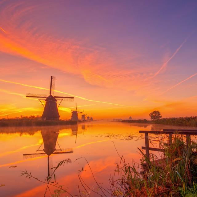 """""""Autumn mist at sunrise on the windmills of Kinderdijk"""" stock image"""