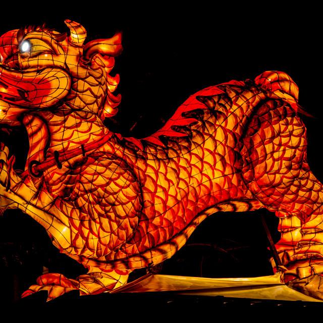 """River Dragon Alight #1"" stock image"