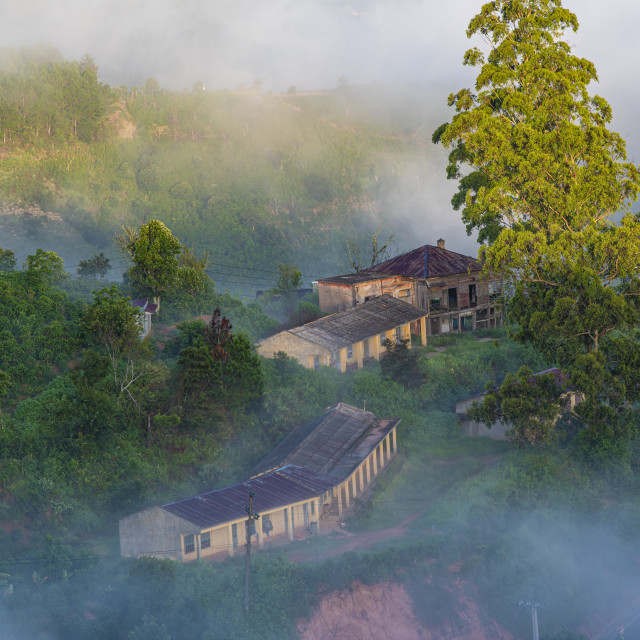 """Da lat countryside in early morning"" stock image"