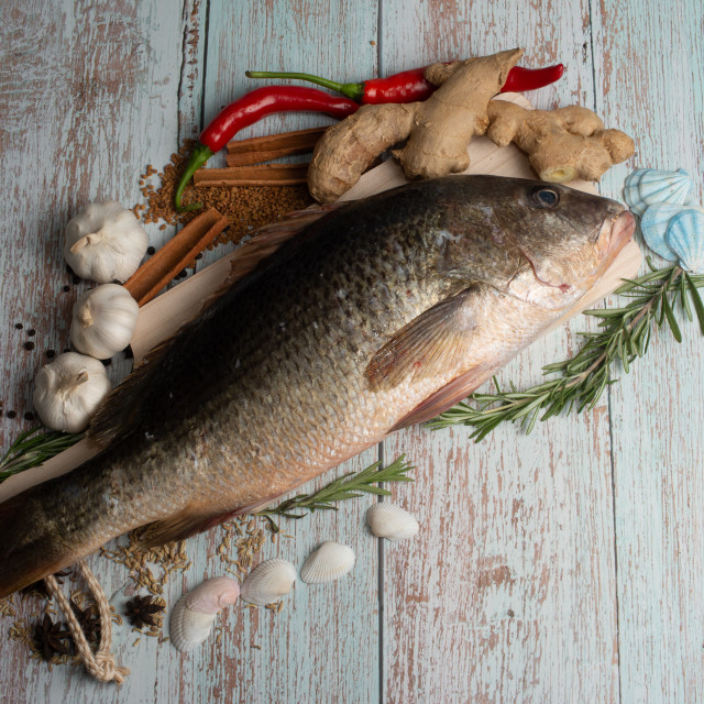 """""""Fresh Golden Snapper on wooden table, Surrounded by spices and raw ingredients"""" stock image"""