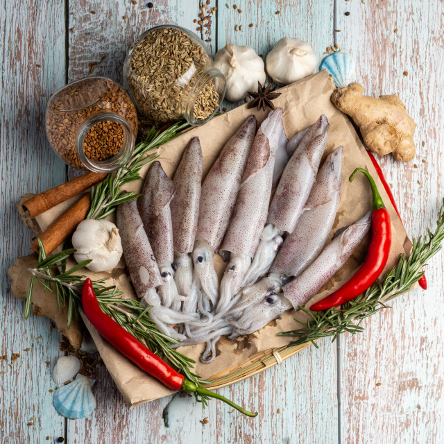 """Fresh Raw Squids surrounded by spices and ingredient on a wooden table"" stock image"