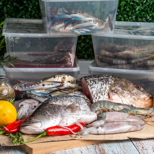 """Fresh Seafood - Golden Snapper, Sea Bass, Prawns, Crabs, and Squids - on a..."" stock image"