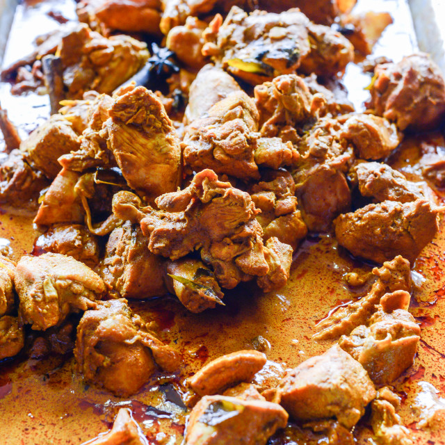 """""""Chicken Curry. Shallow depth of field."""" stock image"""