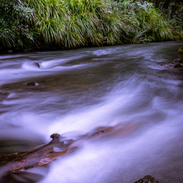 """Cascades near Whangarei Falls, Auckland"" stock image"