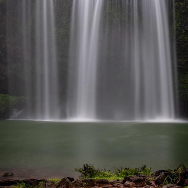"""Whangarei Falls"" stock image"