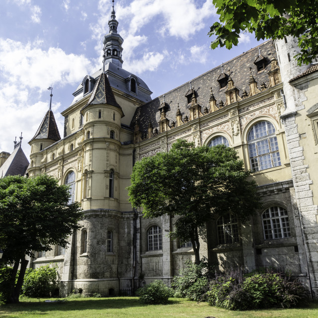"""""""The Vajdahunyad castle the castle of legends and ghosts. Budapes"""" stock image"""