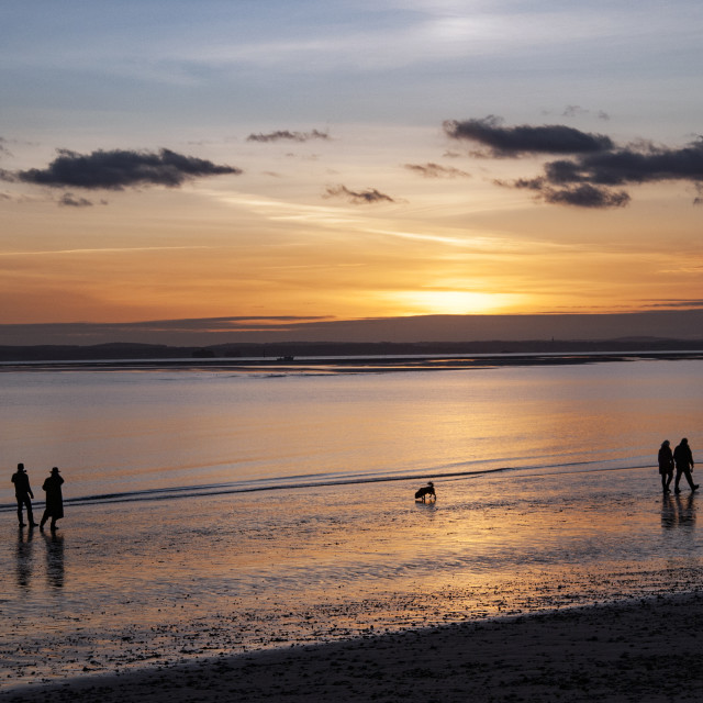 """Walkers and dogs on beach at sunset"" stock image"