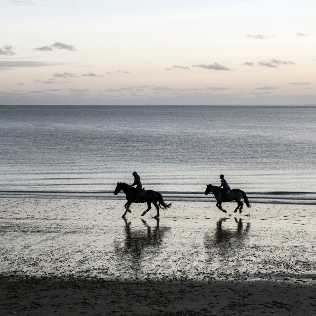 """Horser-riders on a beach in the evening."" stock image"