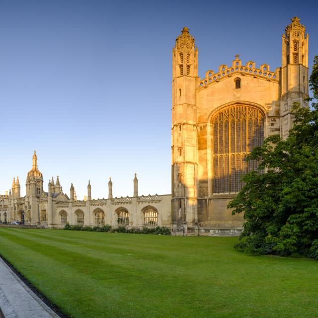 """""""Golden morning summer light on King's College, Cambridge, UK"""" stock image"""