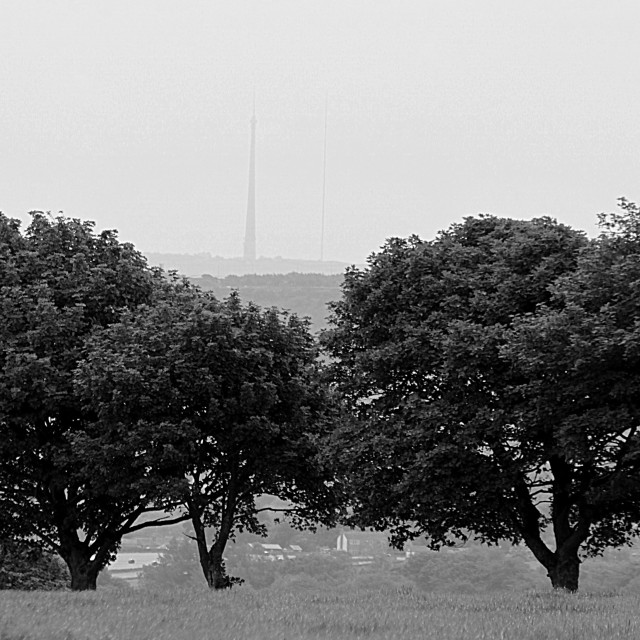 """""""Norland Moor in B & W"""" stock image"""