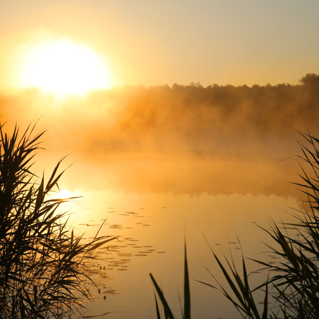 """The sunrise over the lake is reflected on the surface of the water."" stock image"