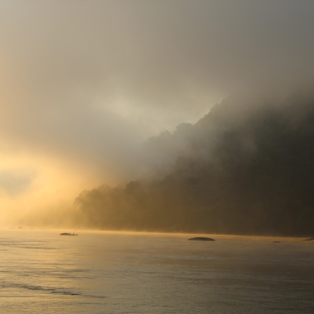 """""""fog on the river"""" stock image"""